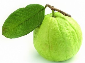 Fruit-guava-aptso exports-fruits export